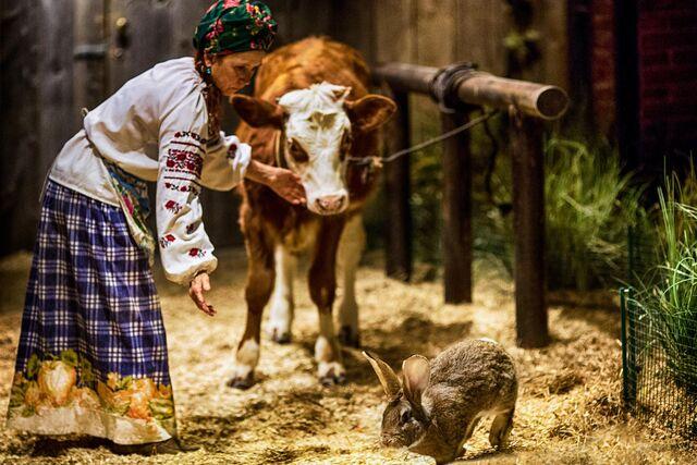 Фотосъемка интерьера ресторана Шинок. Пастушка и корова